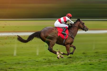 Horse racing blur